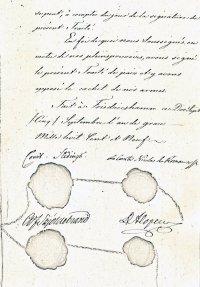 Мирный трактат подписанный 5 сентября 1809 года.