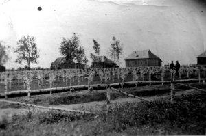 Такие пейзажи ждали немецко-фашистских захватчиков на каждом метре в России.