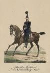 Флигель-адъютант польских войск