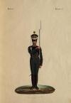 Рядовой лейб-гвардии Финляндского полка (