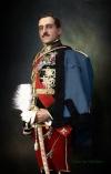 Король Югославии Александр I Карагергиевич. Цвет Ольга Ширнина
